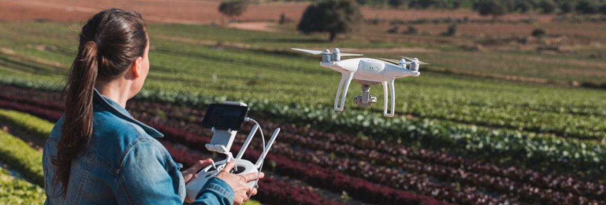 Drone Landwirtschaft